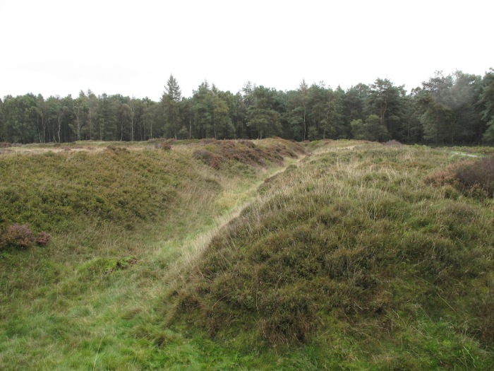 Cawthorn Roman Camps Earthworks12