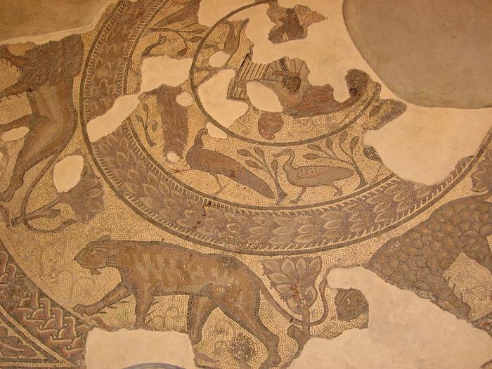 Orpheus Mosaic - Corinium Museum