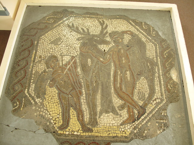 Jewry Wall Cyparissus Mosaic1