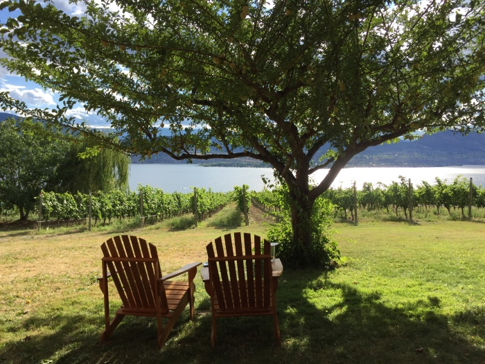 Our little place in the vineyard overlooking Lake Okanagan.