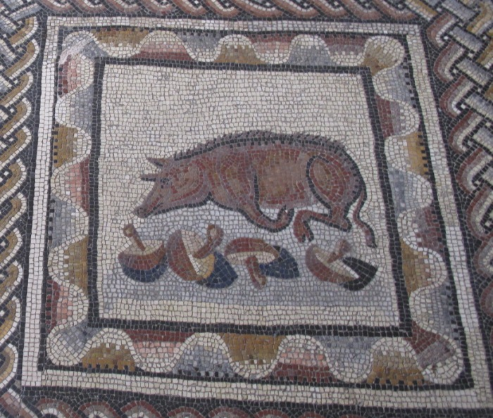 Mosaic of Pig from Vatican Museums